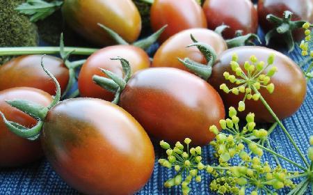 Czekoladowe pomidory kumato: właściwości i zastosowanie najsłodszych pomidorów