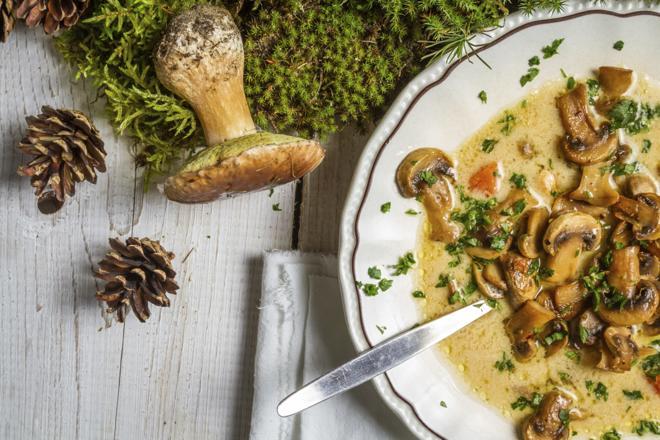Sezon na borowiki: pyszna zupa z prawdziwków [przepis]